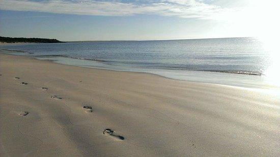 Henleys Holiday Flats: Port Neill Beach