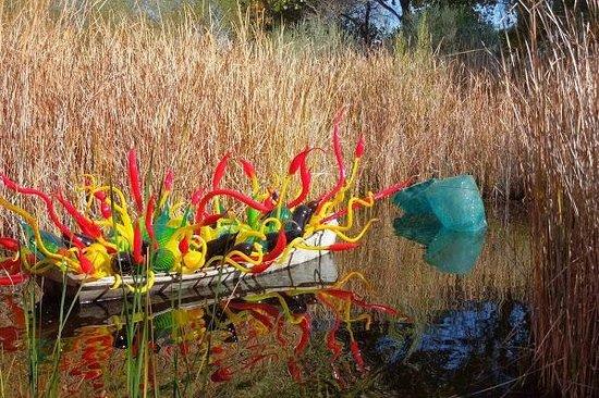 Chihuly In The Garden Picture Of Desert Botanical Garden Phoenix Tripadvisor