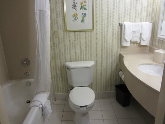 Hilton Garden Inn Anaheim/Garden Grove: small bathroom