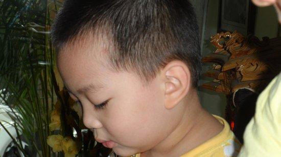 Hanoi Finnegans Hotel: Cute son!!!!