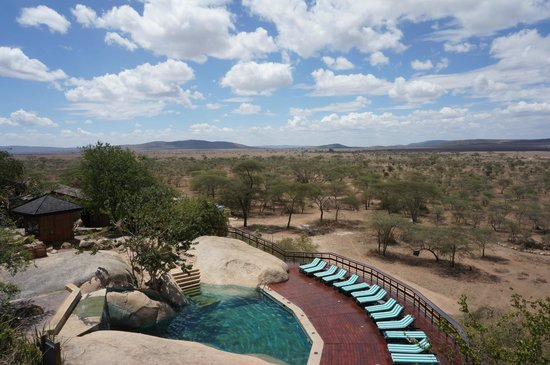 Seronera Wildlife Lodge : Looking down to Pool from viewing deck
