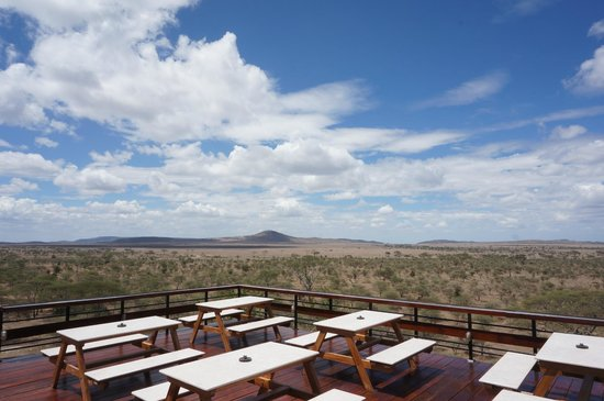 Seronera Wildlife Lodge: Viewing Deck