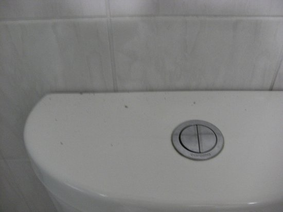 Adelaide Royal Coach : Dirt from replacement extractor fan on toilet cistern