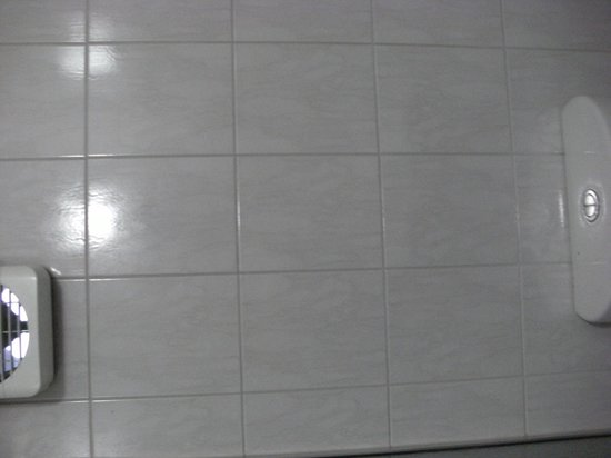 Adelaide Royal Coach : Sower tile grouting - filthy