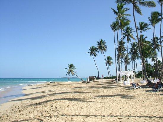 Dreams Punta Cana Resort & Spa: Sandy Beach and Beautiful Water