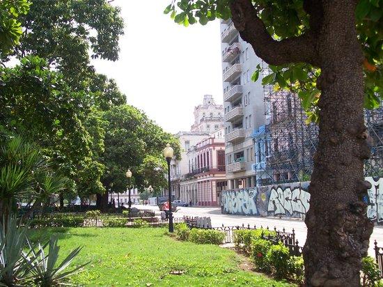 Casa Hilda y Alejandro: La esquina de la casa