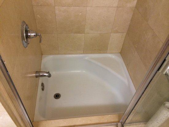 Lotus Honolulu at Diamond Head: Smallest bathtub ever!