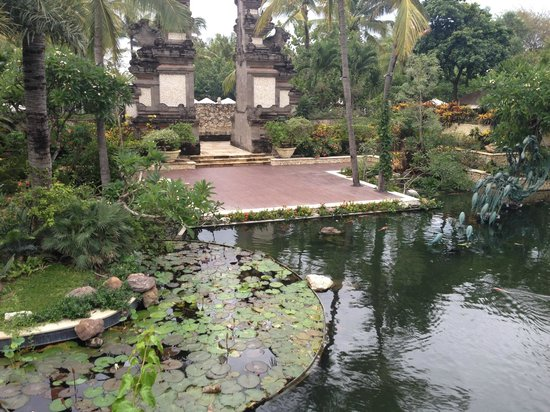 Padma Resort Legian : Beautiful water lilly pond with jumping koi fish