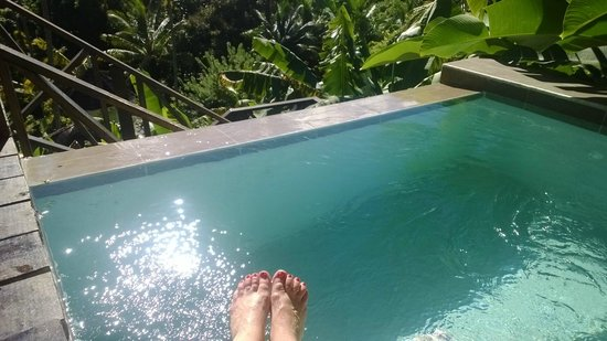 Fond Doux Plantation & Resort : our plunge pool on our last day/Mango Hilltop