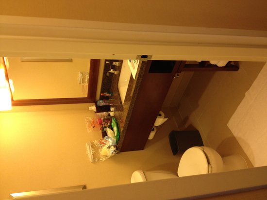 Raleigh Marriott Crabtree Valley : Small bathroom but great lighting