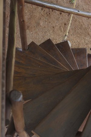 Tarangire Treetops: winding stairs to tree house trap door/entry way