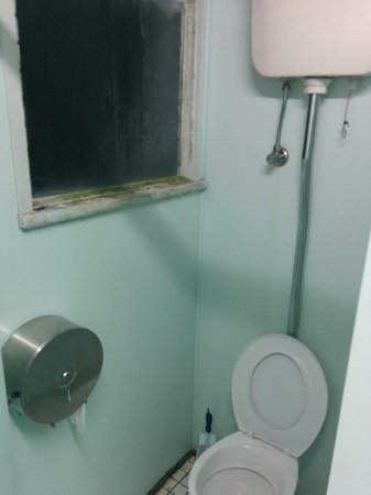 Highfield Private Hotel: Toilet complete with green mould
