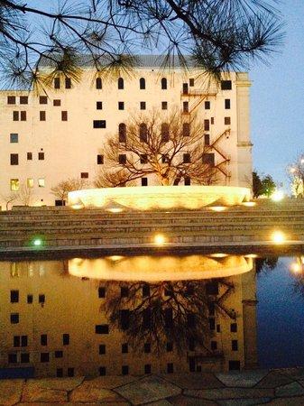 Oklahoma City National Memorial & Museum: Pool, survivor's tree & musuem