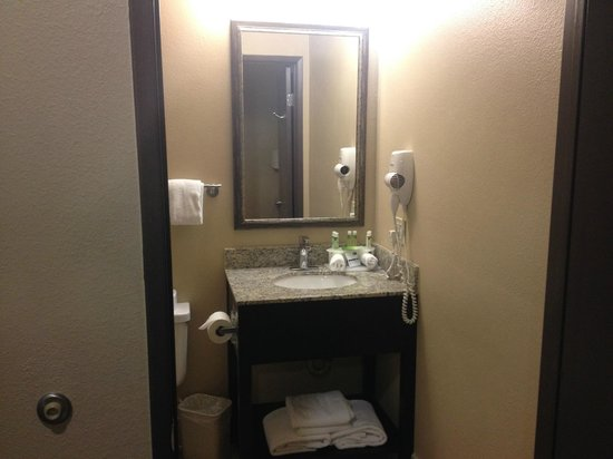 Holiday Inn Express - Los Angeles Downtown West: sink and mirror