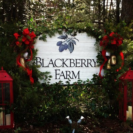 Blackberry Farm: Entrance