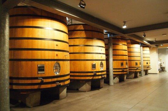 33 Tour Bordeaux & Chateaux: Château Du Tertre