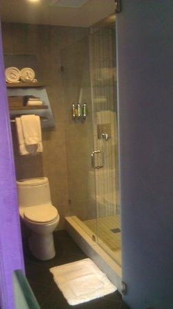 The MOMENT Hotel: shower