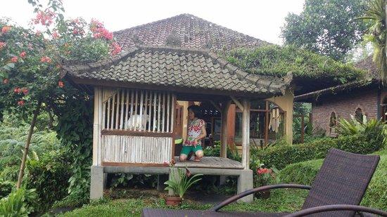 Sarinbuana Eco Lodge : Feeding rabbiys and genie pig