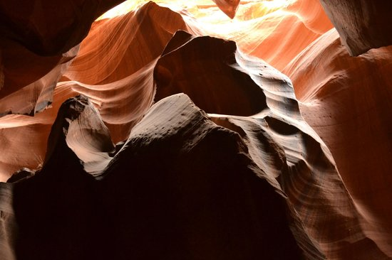 Antelope Slot Canyon Tours: The bear.