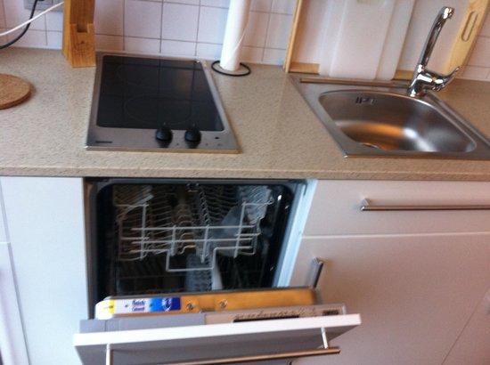 Staybridge Suites St. Petersburg: посудомойка