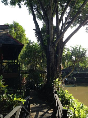 Sepilok Nature Resort: view from our room