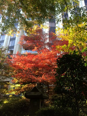 Sheraton Miyako Hotel Tokyo: great garden views from the room