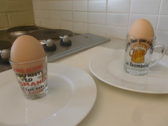 Quest Launceston : Egg cups