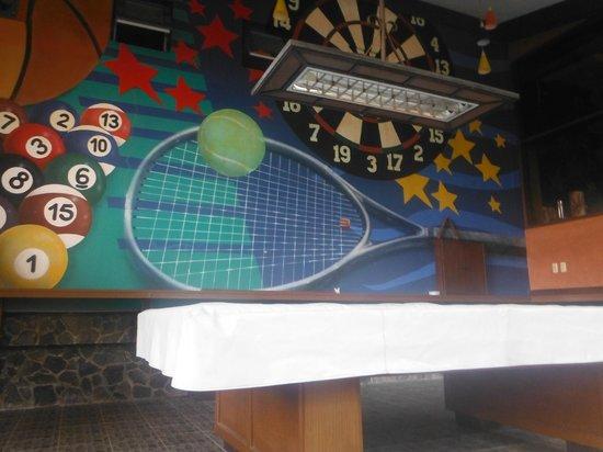Flushing Meadows Resort & Playground: billiards hall