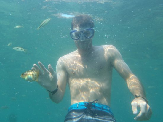 Chembe Eagles Nest: Snorkelling with the ciclids