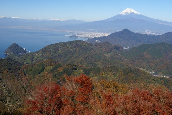 Izunokuni Panorama Park: 天気がよいと駿河湾と富士山がよく見える