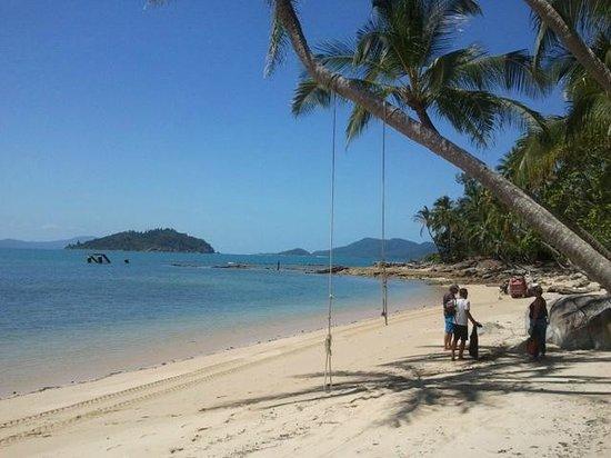Mission Beach Dunk Island Water Taxi: Bedarra Island