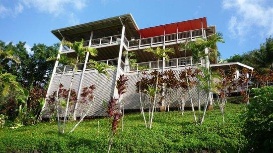 Marjorie's Kauai Inn: Blick vom Pool zum B&B