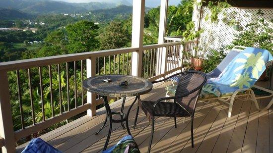 Marjorie's Kauai Inn: Aussicht vom Balkon