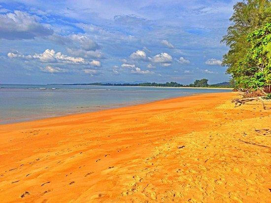 Dewa Phuket Resort Nai Yang Beach: The beach at Dewa
