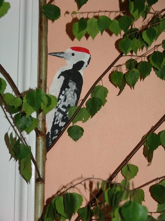 ARTHARMONY Pension & Hostel: Datel/woodpecker