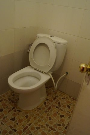 Pepper Guesthouse : WC