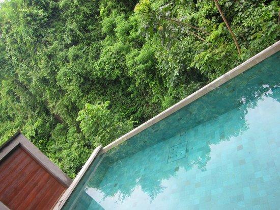 Gending Kedis Villas & Spa Estate: Private pool in the edge of the rain forest