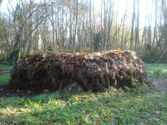 Cabañitas del Bosque: Hojarasca acumulada a pie de cabaña
