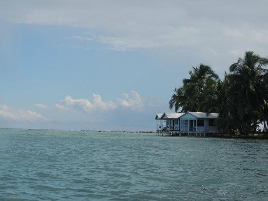 Tobacco Caye Paradise: Vista de cabañas al llegar