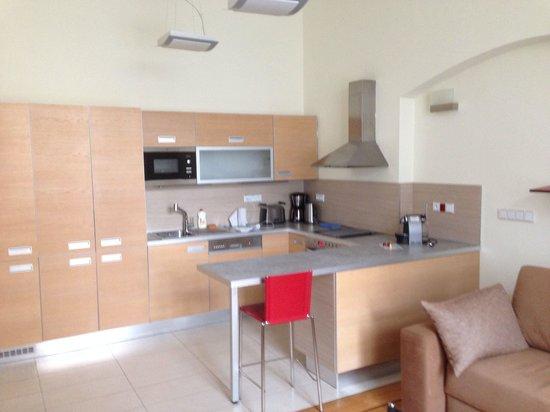 Residence Karolina - Prague City Apartments : Appt 24
