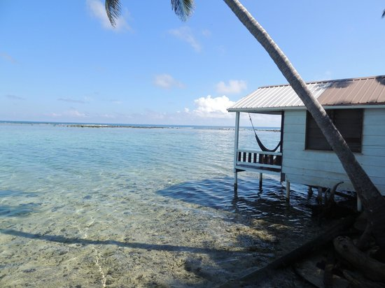 Tobacco Caye Paradise: Vista de la cabaña 5 (igual a la 4)