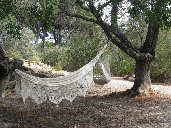 Hangmat in de tuin vlakbij het zwembad picture of montinho da luz quelfes tripadvisor - Outs zwembad in de tuin ...