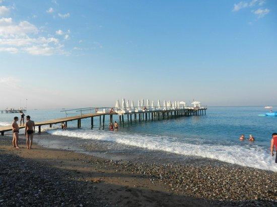 Q Premium Resort: beach