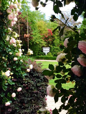 Albertines Beechworth: Roses in Bloom