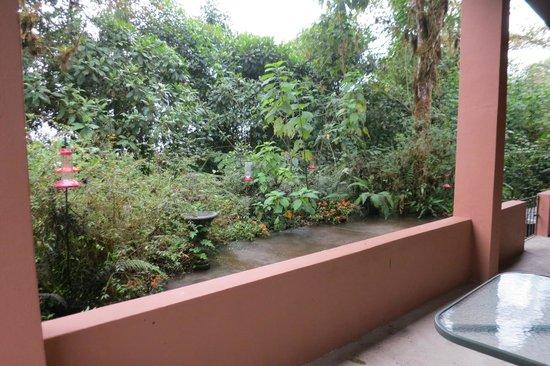 Reserva las Gralarias : view of feeders from porch of separate building