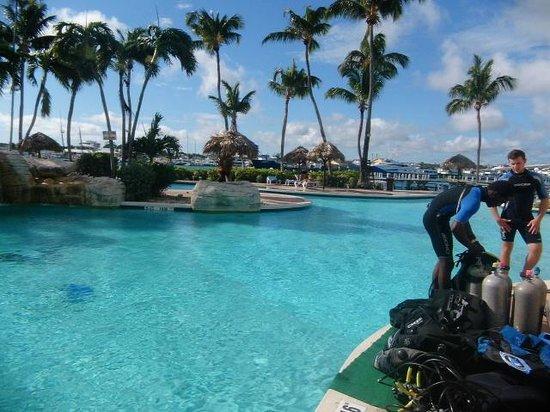 Paradise Island Harbour Resort All Inclusive: Hermosa piscina