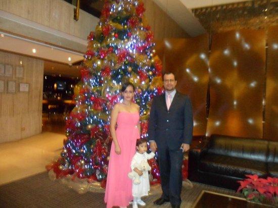 Bogota Plaza Summit Hotel: Recepción del Hotel