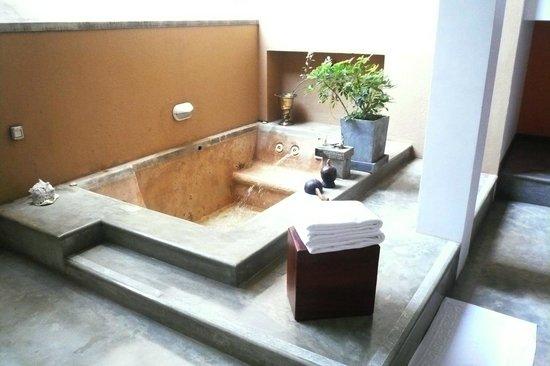 Aditya: outdoor plunge pool