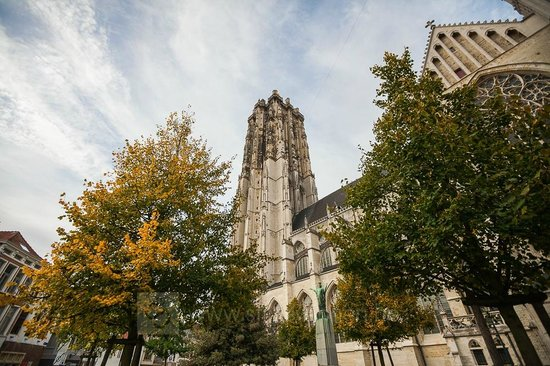 Мехелен, Бельгия: Sint-Romboutskathedraal - St Rumbolds' Cathedral