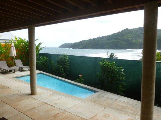 Pagua Bay House Oceanfront Cabanas: Bungalow avec piscine privée